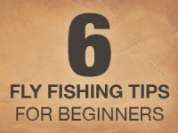 6 Tips Fly Fishing