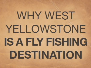 fly fishing destination