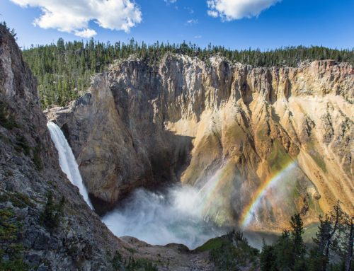 The Top Seven Waterfalls of Yellowstone National Park