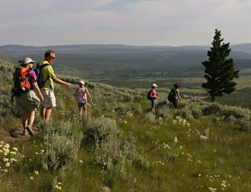 The Top 7 Hikes Outside of Yellowstone National Park