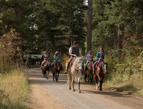 5 Reasons to Gather in West Yellowstone